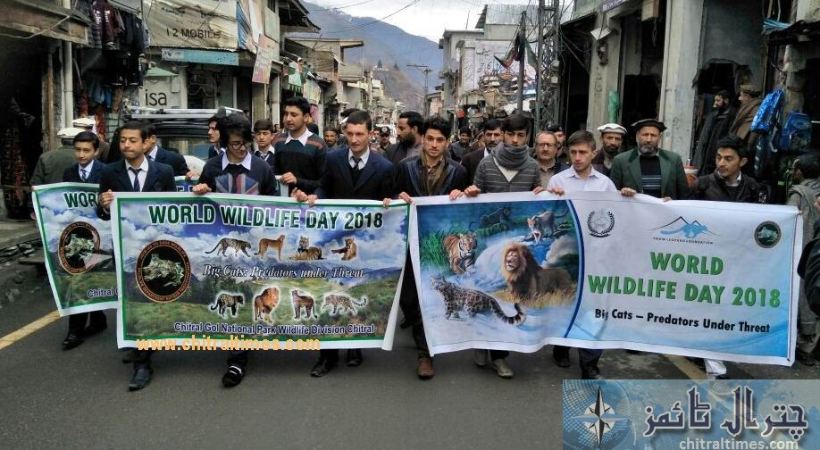 world wild life day observed in chitral