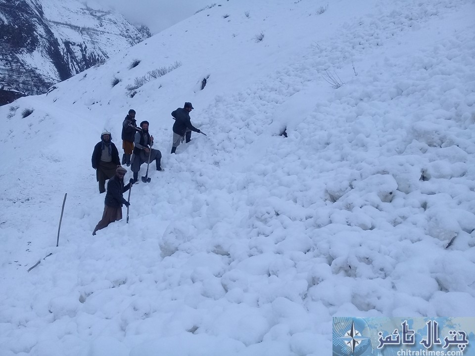 chitral weather terich2