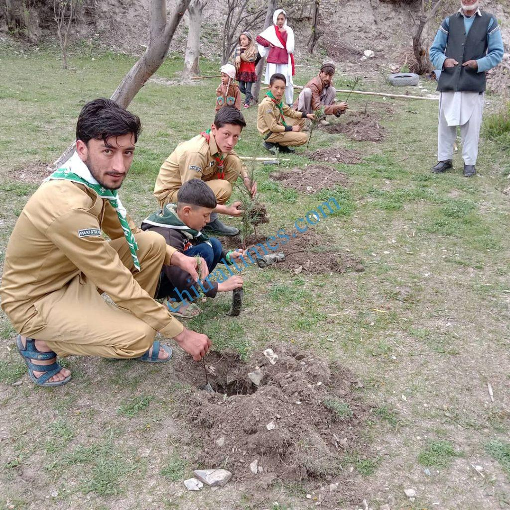 karimabad valley plantation campaign boy scouts chitral 2 scaled