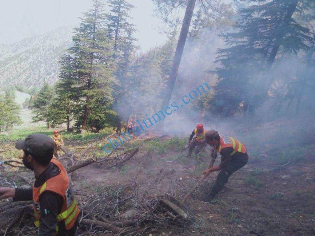 chitraltimes fire brokeout chitral forest scaled